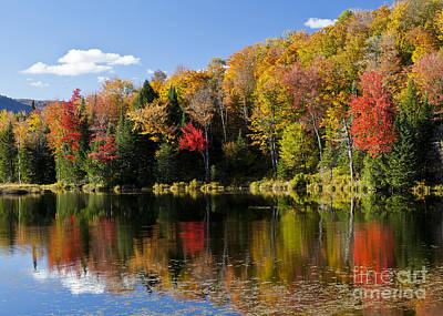 Photograph - Long Pond Autumn by Alan L Graham