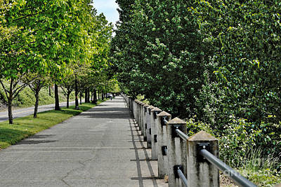 Long Public Sidewalk In Nature Art Print