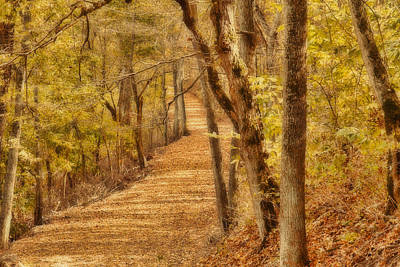 Photograph - Long Road by Jack R Perry