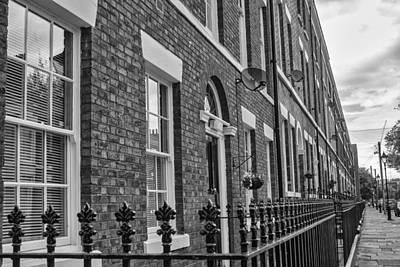 Photograph - Long Row by Georgia Fowler