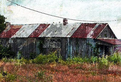 Photograph - Long Since Abandoned - Back To Nature by Marie Jamieson