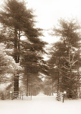 Photograph - Long Snowy Driveway - Sepia Vertical by Ron Pate