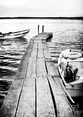 Toro Photograph - Long Way Down by John Rizzuto