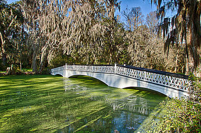 Photograph - Long White Bridge At Magnolia Plantation by Bill Barber