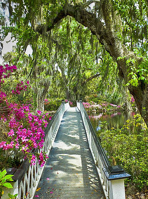 Photograph - Long White Bridge by Bill Barber