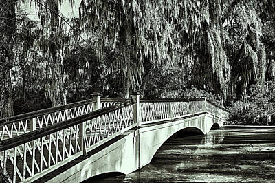 Photograph - Long White Bridge Magnolia Plantation by Bill Barber