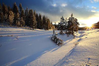 Photograph - Long Winter Shadows by David Andersen
