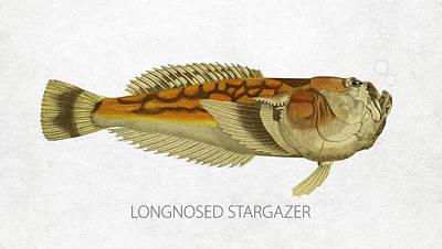 Saltwater Fishing Drawing - Longnosed Stargazer by Aged Pixel