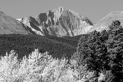 Photograph - Longs Peak Autumn Aspen Landscape View Bw by James BO Insogna
