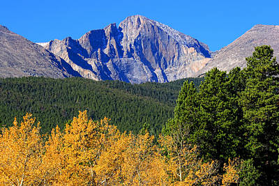 Photograph - Longs Peak Autumn Aspen Landscape View by James BO  Insogna