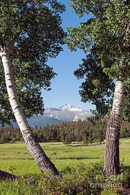 Photograph - Longs Peak In Upper Beaver Meadows In Rocky Mountain National Park by Fred Stearns