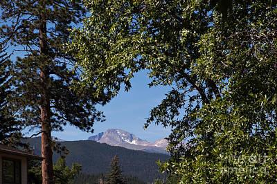 Longs Peak Through The Trees Art Print by Kay Pickens