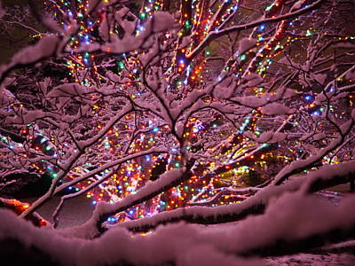 Photograph - Longwood Lights 1 by Richard Reeve