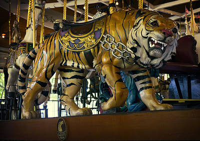 Stripe.paint Photograph - Looff Carousel Tiger 2 by Daniel Hagerman