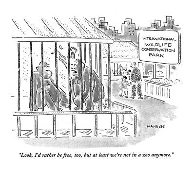 Cage Drawing - Look, I'd Rather Be Free, Too, But At Least We're by Robert Mankoff