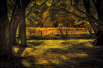 Look Into The Golden Light Art Print by Marvin Spates