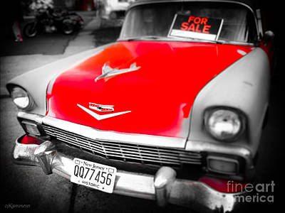 Photograph - Lookin' For Love by Colleen Kammerer