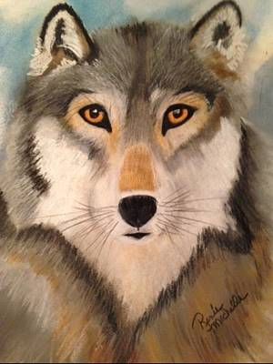 Looking At A Timber Wolf Art Print