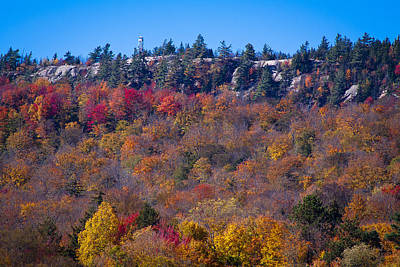 Photograph - Looking At The Top Of Bald Mountain by David Patterson