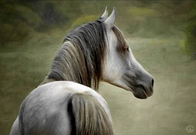 Grey Horse Digital Art - Looking Back by Gun Legler