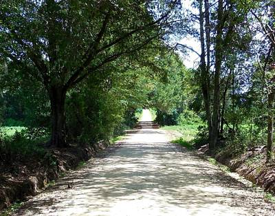 Anniversary Photograph - Looking Down A Country Road by Eloise Schneider