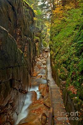 Photograph - Looking Down Flume Gorge by Adam Jewell