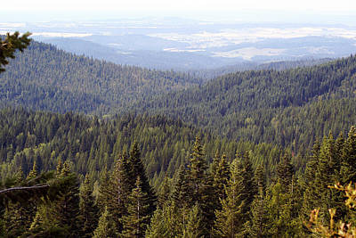 Photograph - Looking Down From Mount Spokane by Ben Upham III