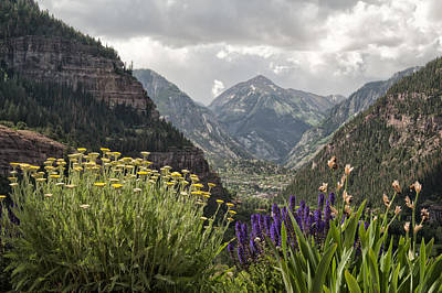 Photograph - Looking Down On Ouray Colorado by Melany Sarafis