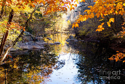 Photograph - Looking Down The Eno River by Sandra Clark
