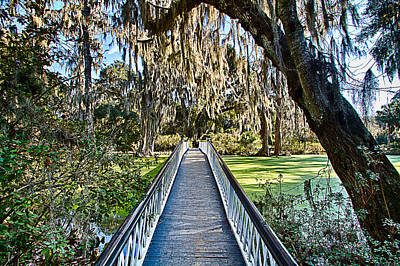 Photograph - Looking Down The Long White Bridge by Bill Barber