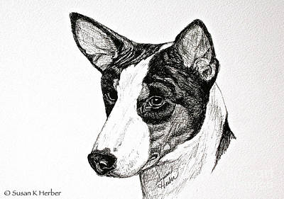 Drawing - Looking For Trouble by Susan Herber
