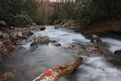 Looking Glass Creek Art Print by Jonathan Welch
