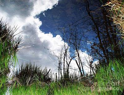 Art Print featuring the photograph Looking Into The Bog by Joy Nichols