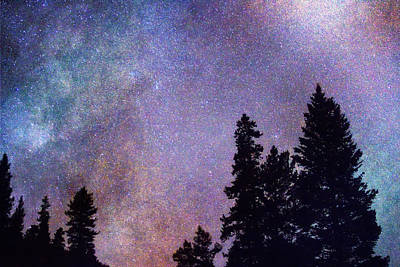Stary Photograph - Looking Into The Heavens by James BO  Insogna