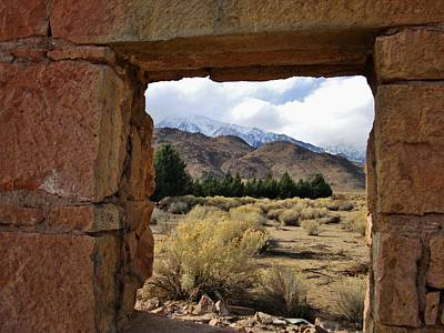 Art Print featuring the photograph Looking Out by Marilyn Diaz