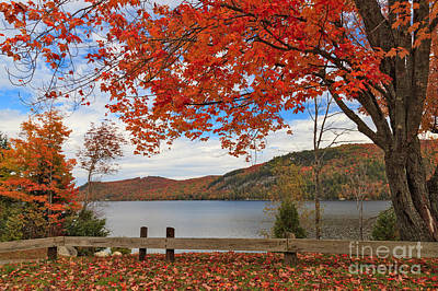 Maples Photograph - Looking Out Over Crystal Lake by Charles Kozierok