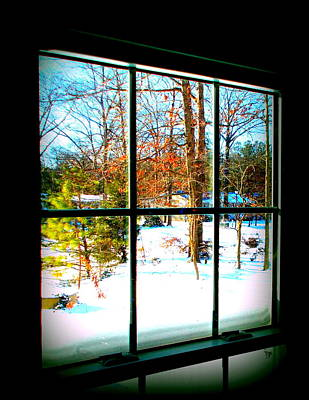 Photograph - Looking Out by Pamela Hyde Wilson