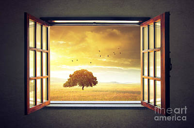 Spring Landscape Photograph - Looking Out The Window by Carlos Caetano