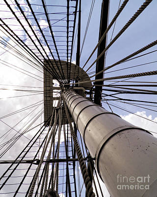 Photograph - Looking Skyward by Emily Kelley