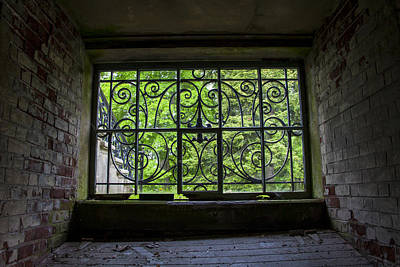 Looking Through Old Basement Window On To Vibrant Green Foliage Fine Art Photography Print  Art Print by Jerry Cowart