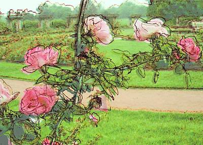 Looking Through The Rose Vine Art Print