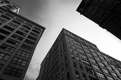 Photograph - Looking Up by Dustin  LeFevre
