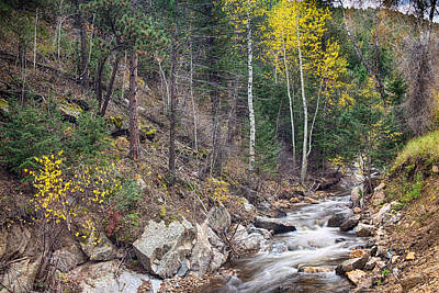 Looking Up The South St Vrain Canyon Art Print
