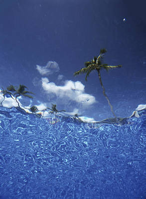 Looking Up Through Swimming Pool �� Art Print by Ian Cumming