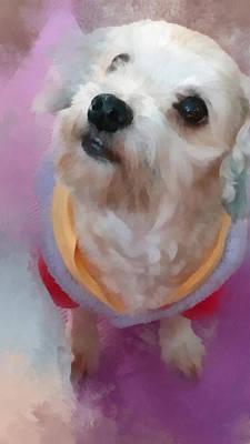 Pups Digital Art - Looking Up To You by Tony Chong