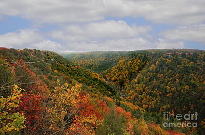 Looking Upriver At Blackwater River Gorge In Fall From Pendleton Point Art Print by Dan Friend