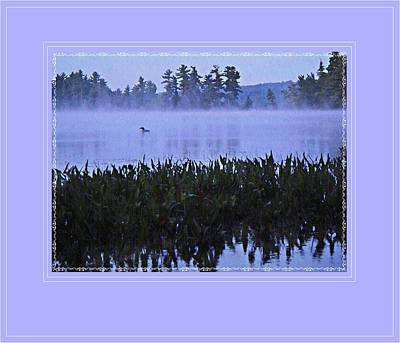 Loon On A Misty Morning At Parker Art Print