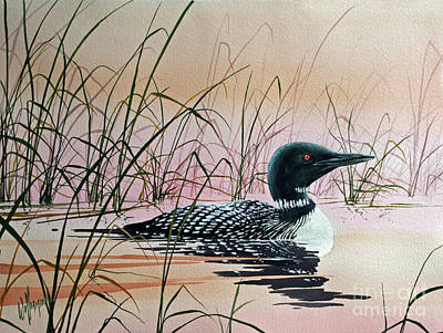 Loon Sunset Art Print