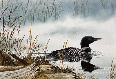 Loon Painting - Loons Misty Shore by James Williamson