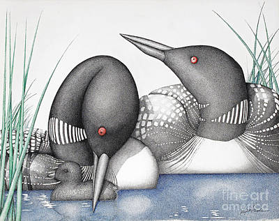 Loon Drawing - Loons by Wayne Hardee